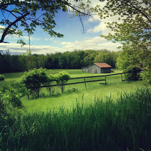 photograph of barn in a lush grassy clearing imprinted on ceramic tile