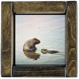 Beaver Tile Framed