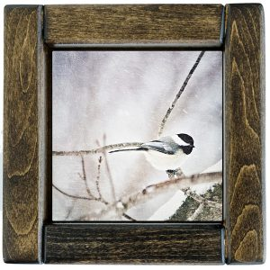 Framed Chickadee Photo Tile