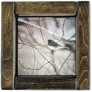 Framed Junco Photo Tile