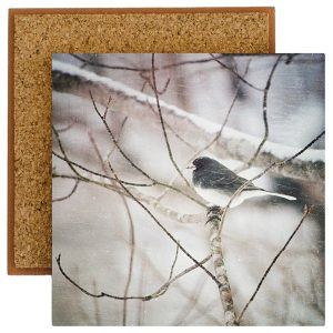Junco Photo Tile with Cork Back