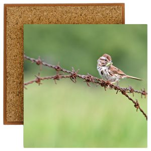 Sparrow on a Wire Photo Tile with Cork Back
