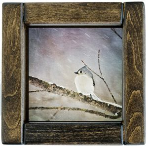 Framed Tufted Titmouse Photo Tile
