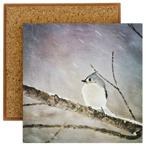 Tufted Titmouse Photo Tile with Cork Back
