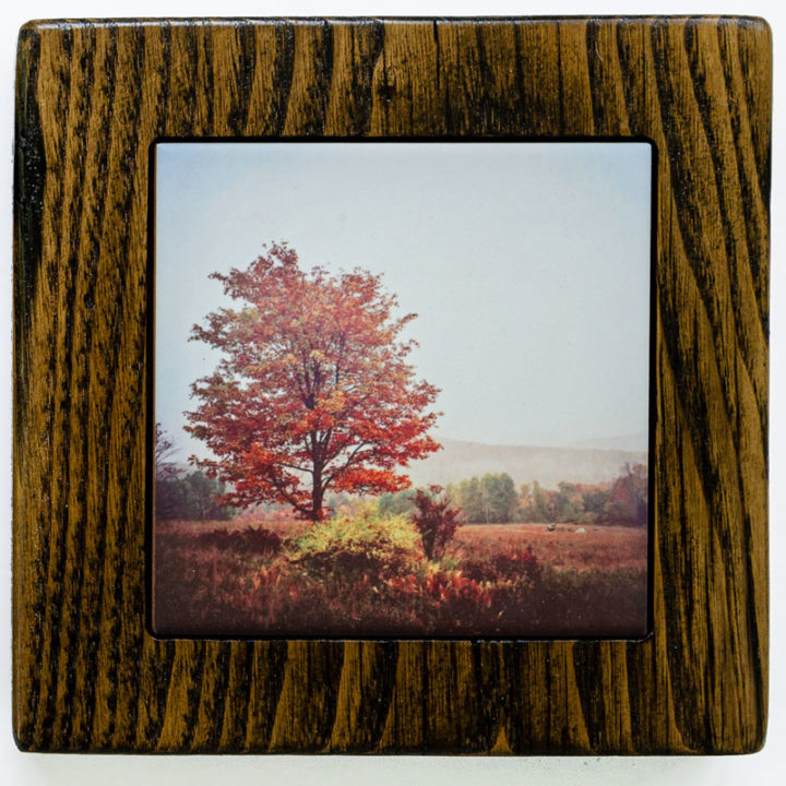 Autumn Tree Framed Gift Set