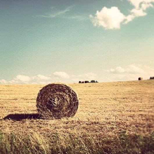 Round Hay Bale Photo Tile