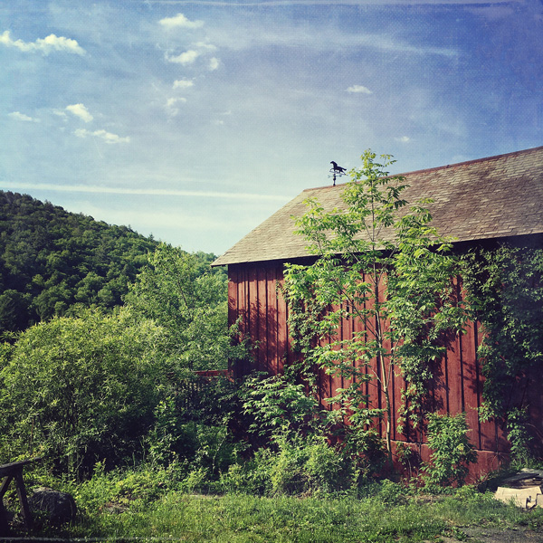 Weather Vane Barn Photo Tile